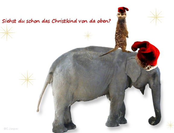 Jasper Steuerberatung wünscht schöne Weihnachtsfeiertage!